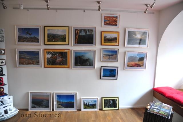 expozitie Ioan Stoenica la Biscuit