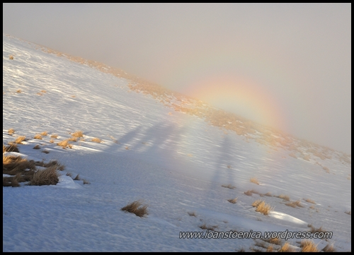 spectrul din brocken, fenomenul gloria (brocken spectre)