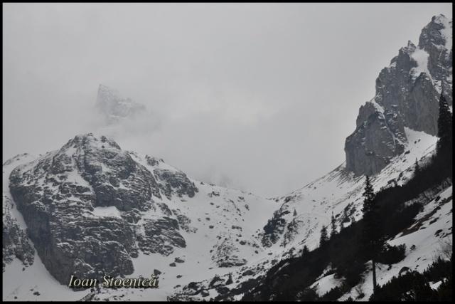 spre hornurile malaesti, in ceata