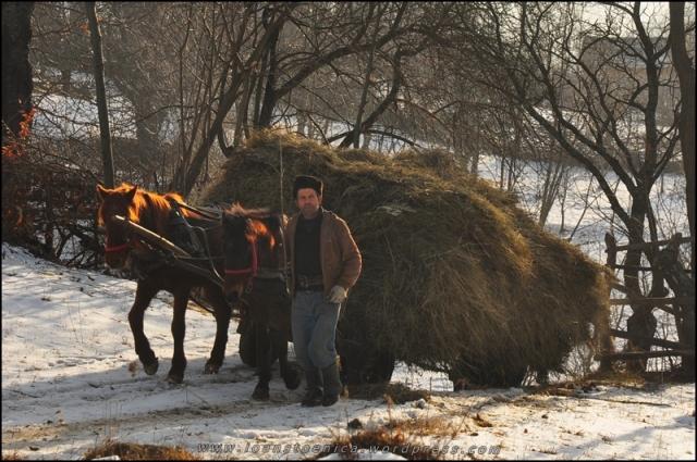 caruta la marginea satului