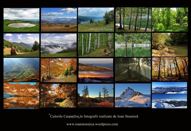http://ioanstoenica.files.wordpress.com/2012/06/imagini-ioan-stoenica-20.jpg?w=640&h=440