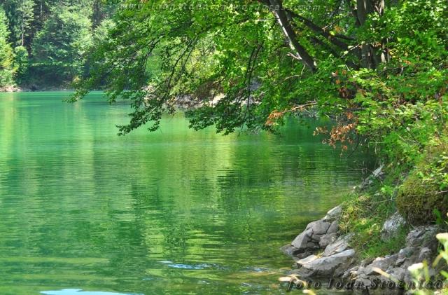 lacul ighiel - apa verde