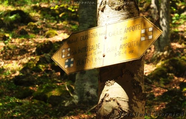 indicator spre platoul ciumerna