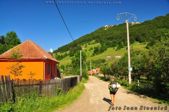 Drumul satului in Necrilesti