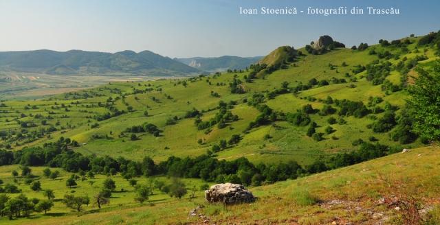 dealuri la poalele trascaului