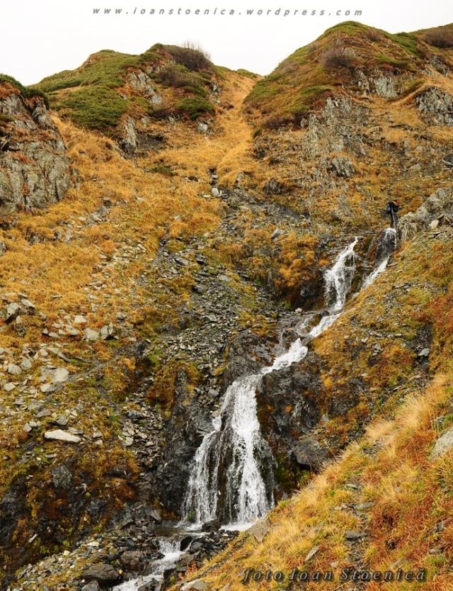 cascada in fagaras