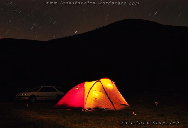 noaptea la cort