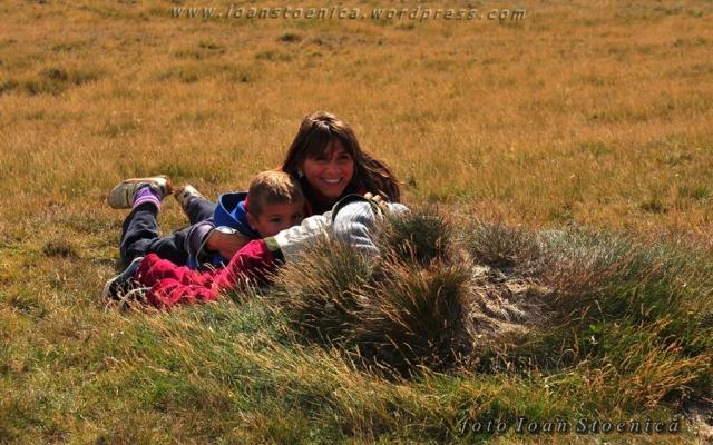 pititi in iarba