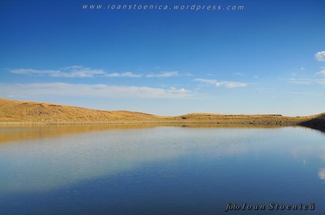 lacul vulturilor, siriu