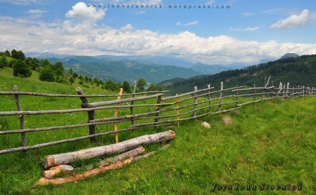 gard pe poiana de munte
