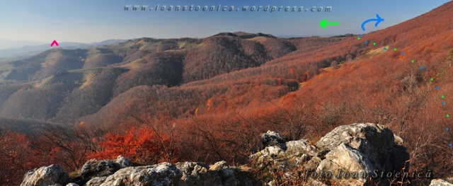 panorama spre vest de magura codlei