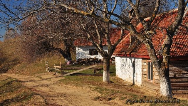 case pe dealul stimbavului
