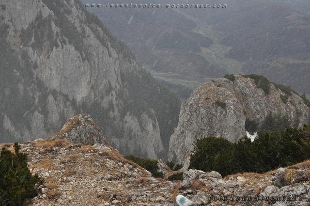 ninsoare pe munte