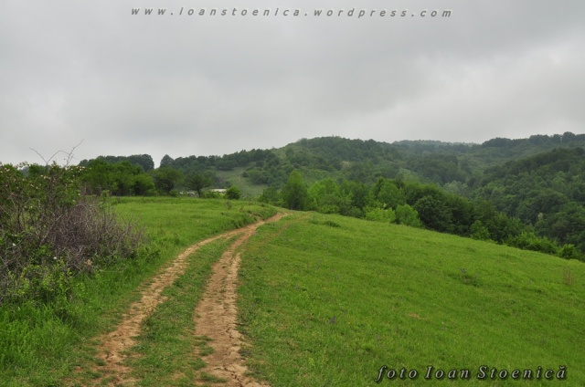 drum pe deal verde