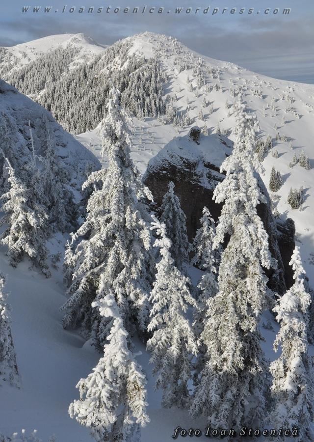 turnul de arama iarna - ciucas