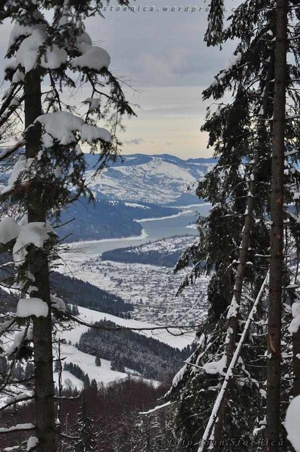 lacul izvorul muntelui - printre copaci