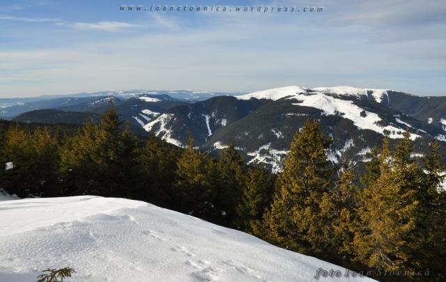 varful Budacu - muntii Bistritei