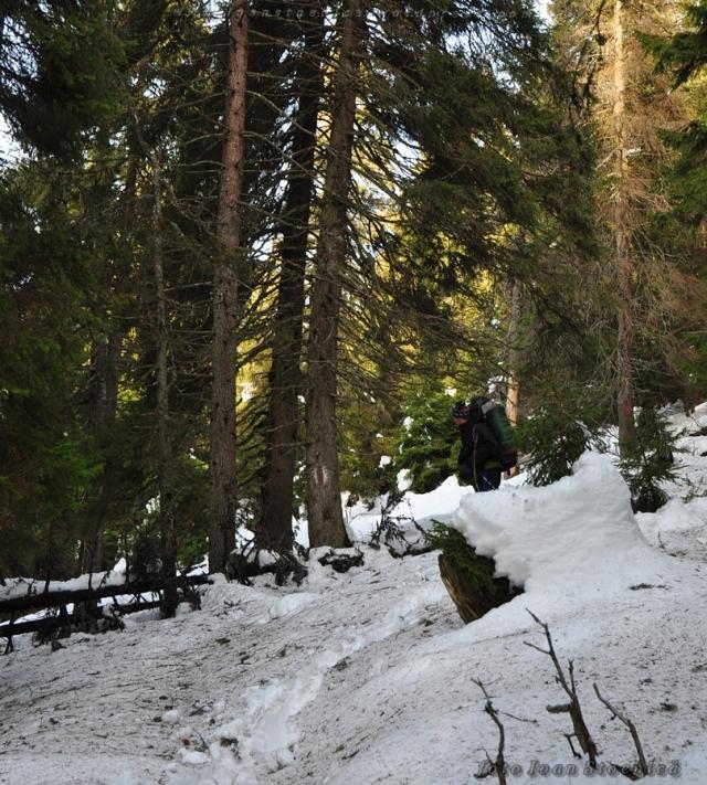 marcaje vechi in muntii bistritei