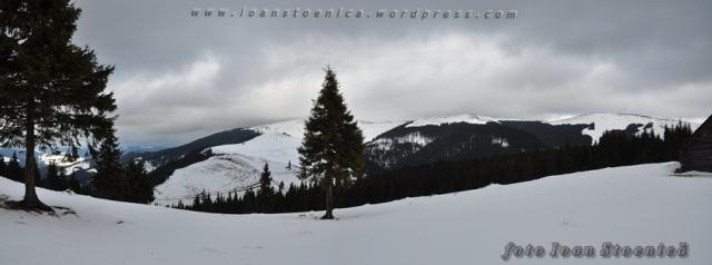 panorama spre varful budacu