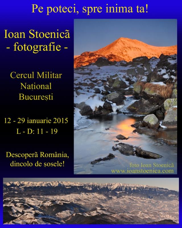 Expo Ioan Stoenica CMN 2015