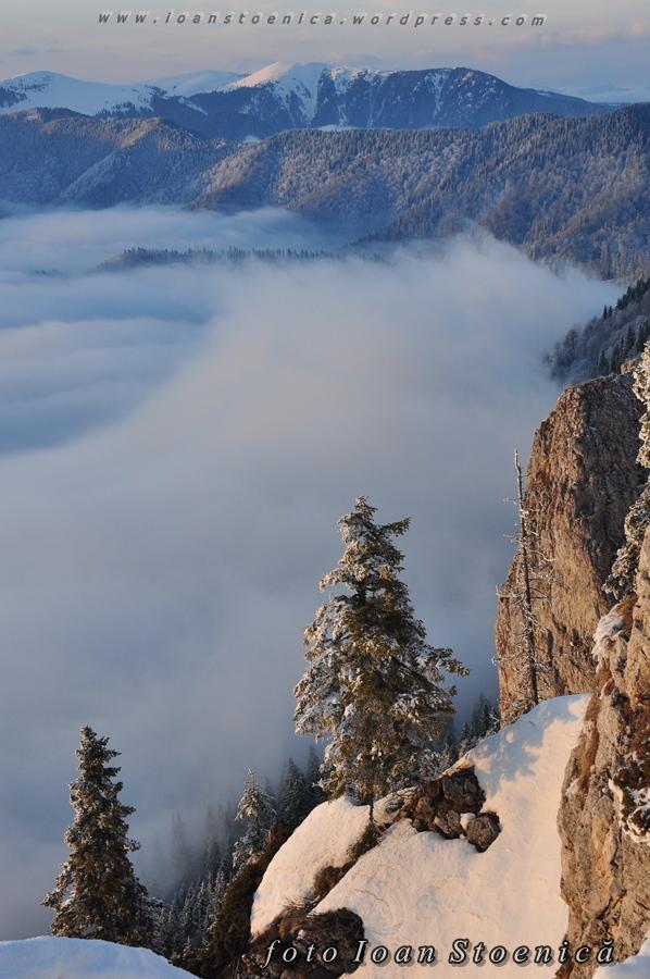 brad deasupra norilor