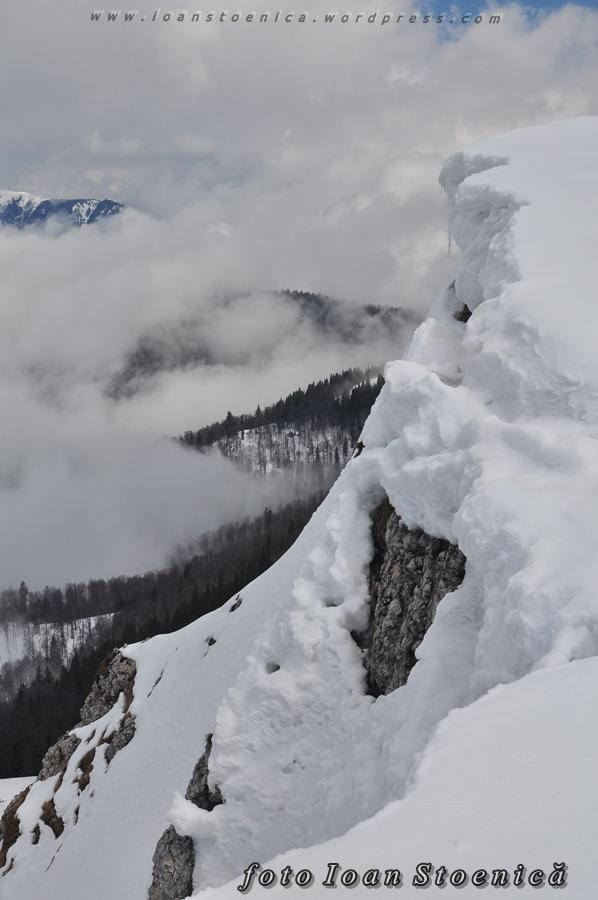 margini albe de zapada