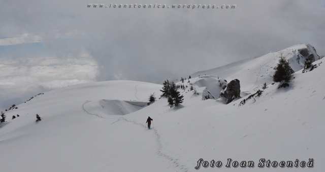 sir de urme prin zapada -  peisaje de iarna de la munte