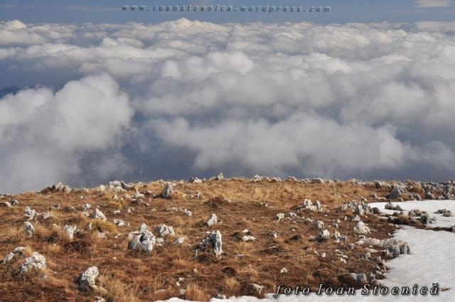 unde norii cad pe pamant sub forma de pietre albe