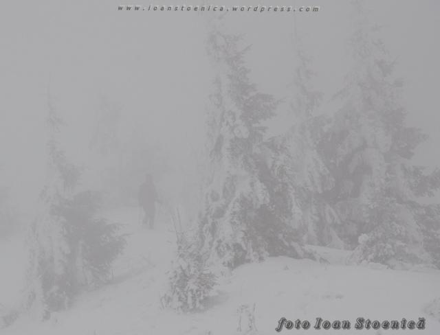 pierdut in ceata alba