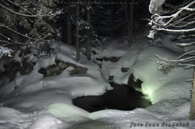 apa in padure - noaptea