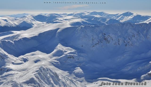 multi munti albi