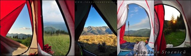 dimineata la cort - alta priveliste de fiecare data