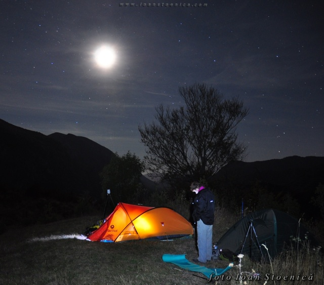 noaptea la cort luna plina