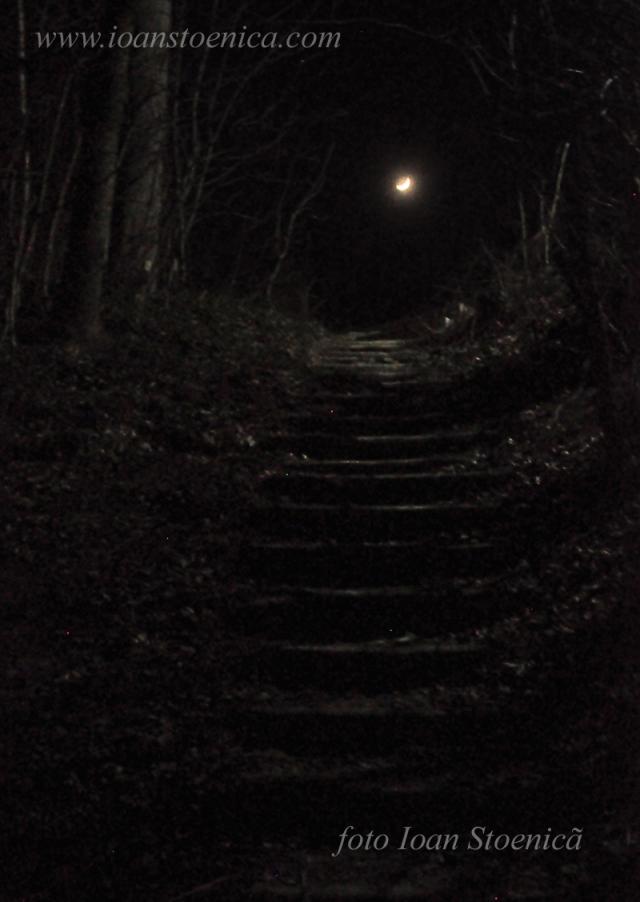luna pe scari