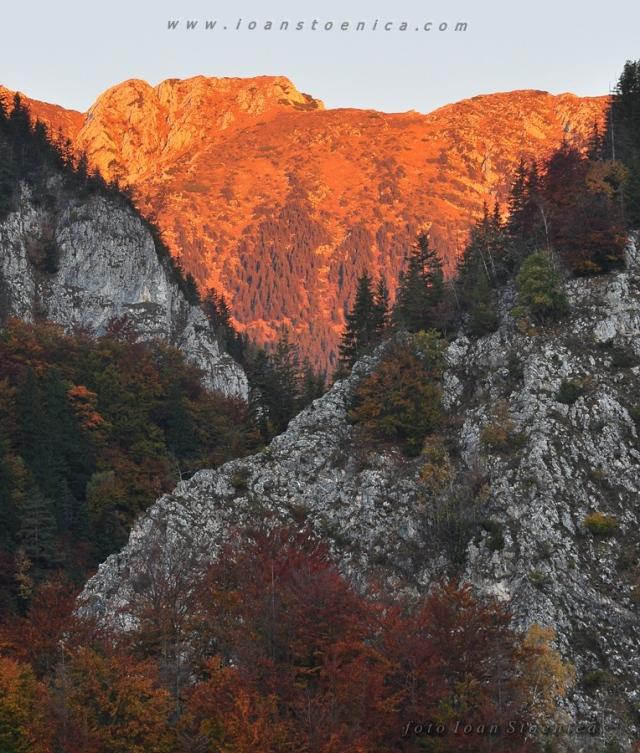 creasta pietrei craiului - rosie la rasarit