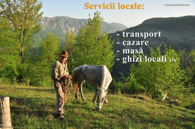 servicii pe munte