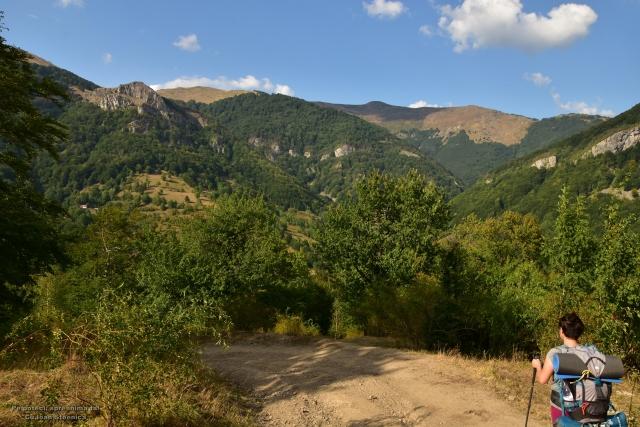 spre Prisacina - muntii cernei