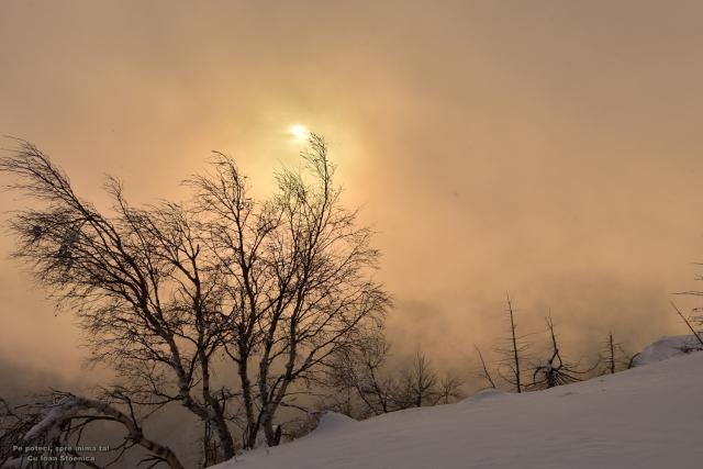 soare prin ceata